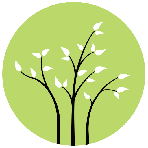 Three Branches Wellness